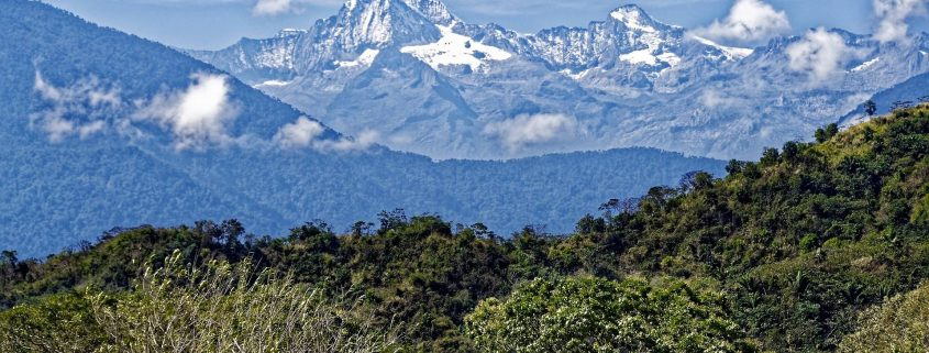 colombia jungle and mountains